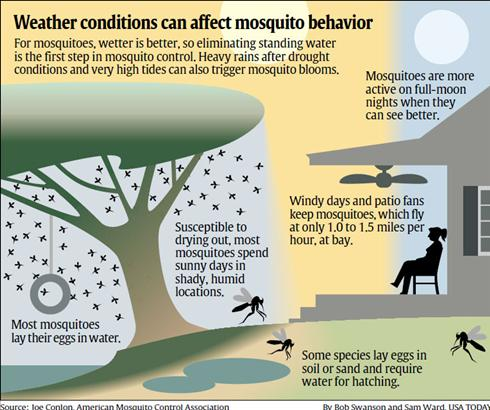 Weather and Mosquito's