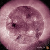 Latest SDO AIA 211